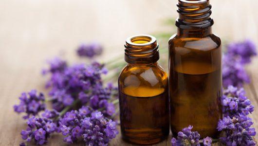Top Benefits Of Ayurvedic Immunity Boosters